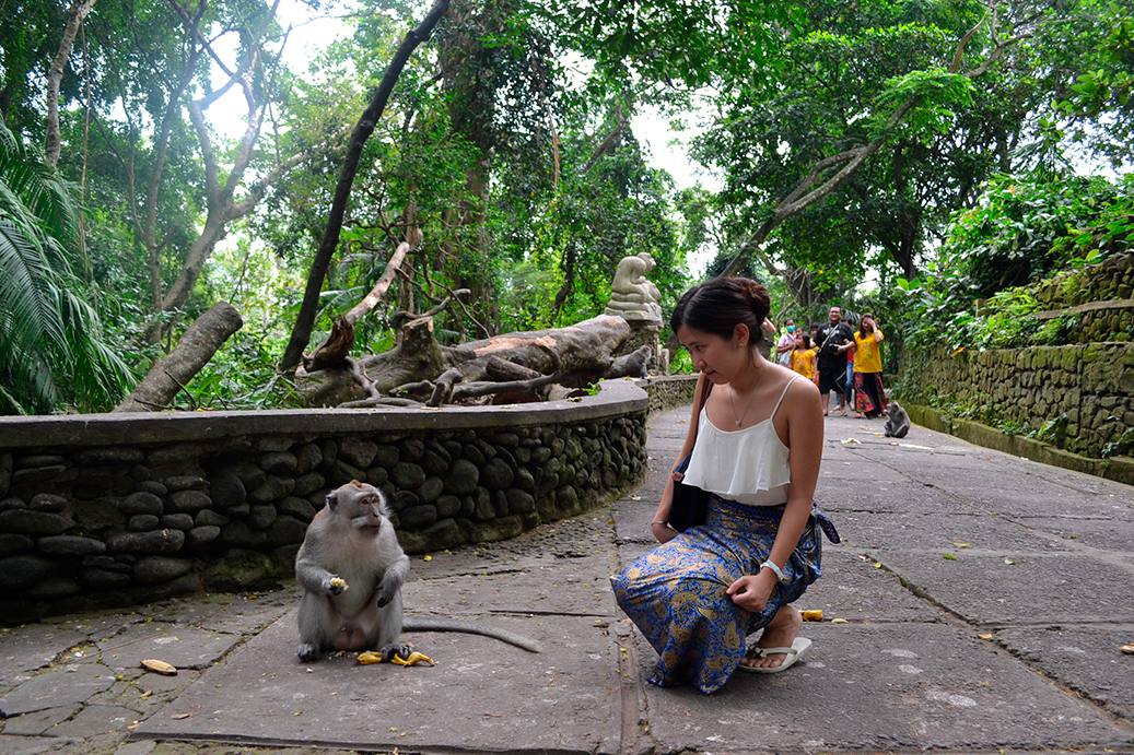 img-ubud-monkey-forest
